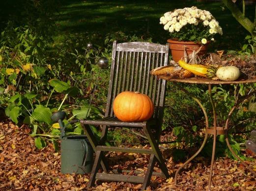 pumpkin-199371_1280